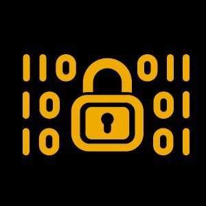 SAP Application and Information Security Live